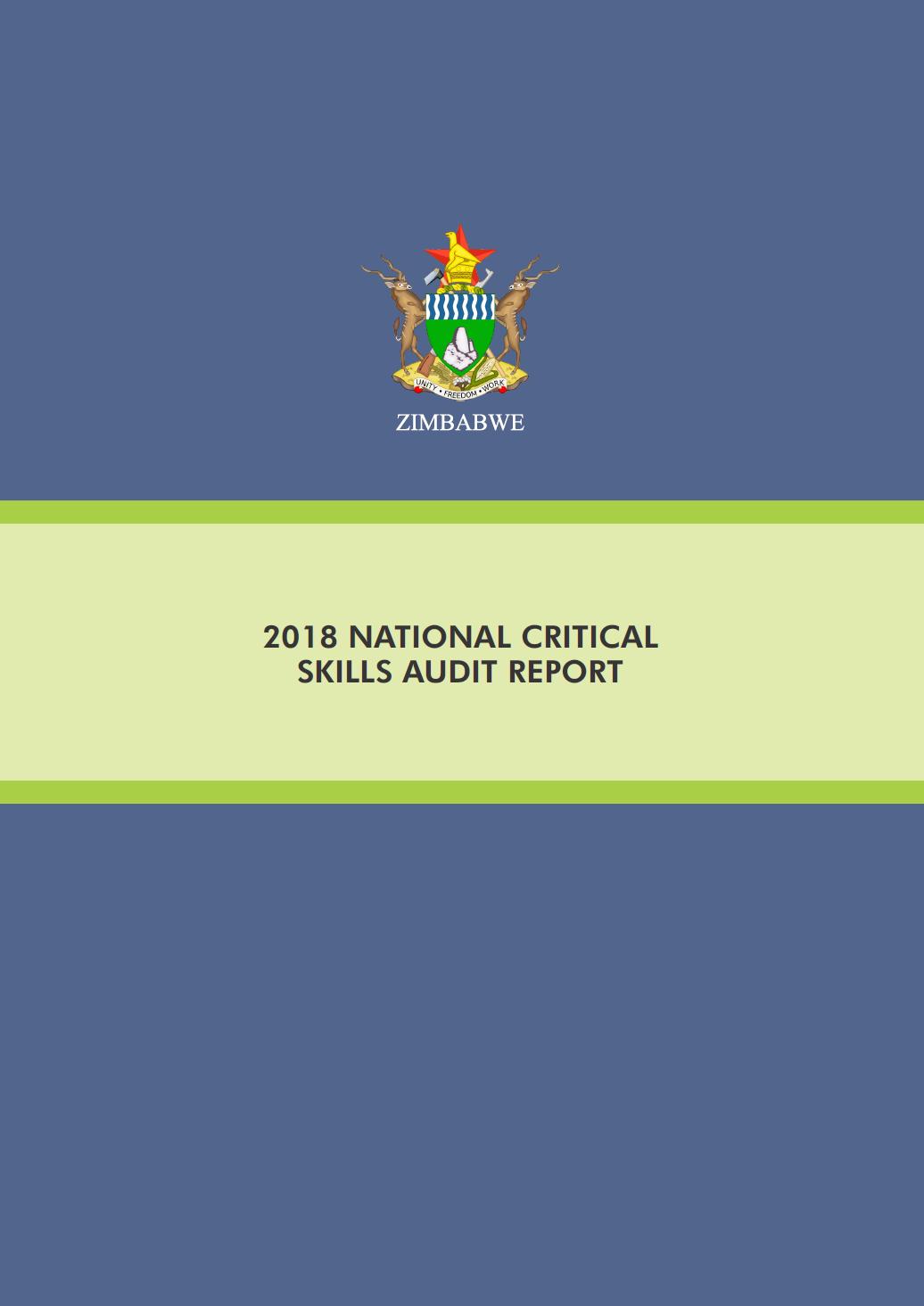 national skills audit report